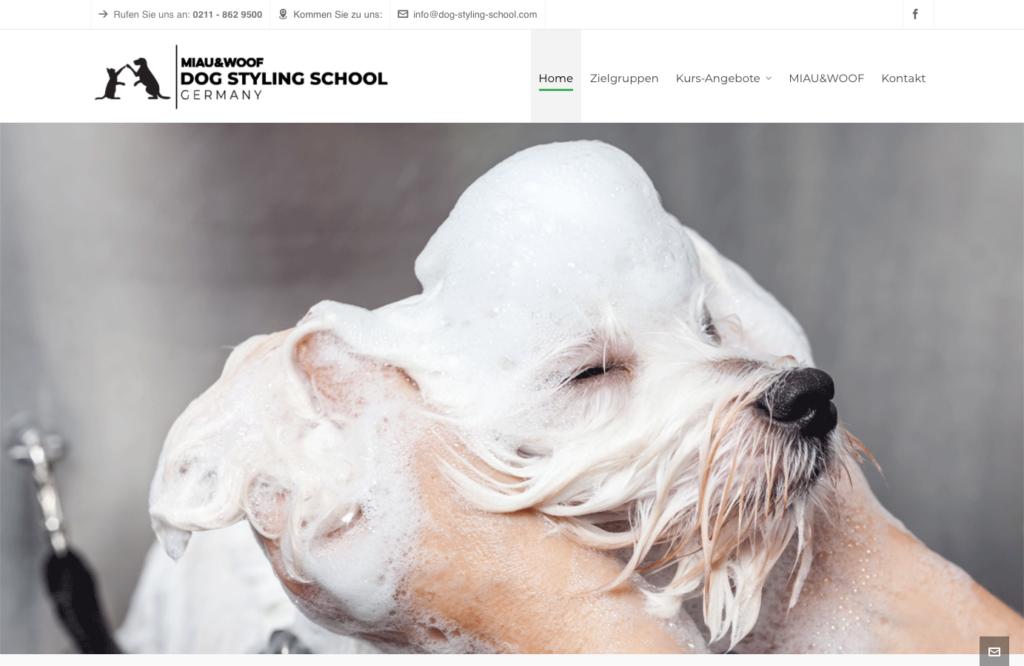 Dog Styling School