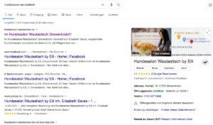 Google my Business Google Suche