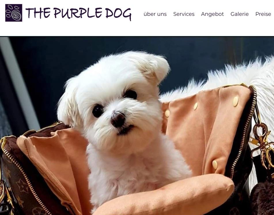 Dog salon Purple dog